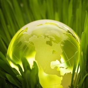 Nature & Sustainability