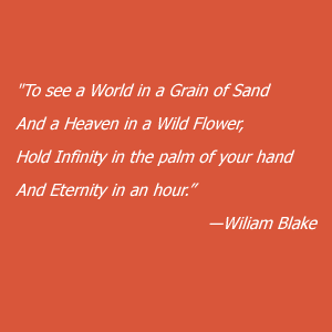 quote-red-blake